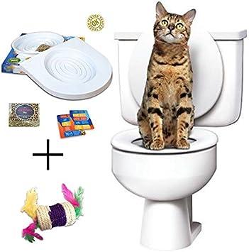 Ducomi Bobo - Kit para el Entrenamiento de Gatos - Entrene a su ...