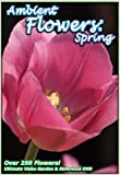Ambient Flowers: Spring - The Ultimate Video Garden & Reference DVD