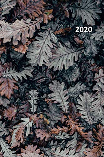 2020: Autumn personality Cool Planner Calendar Organizer Daily Weekly Monthly Student for researching best places to see fall colors in usa ()