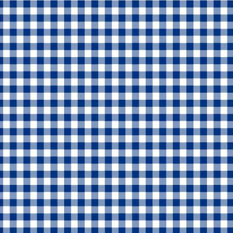 Disposable 3-Ply Party Napkins Paper, Blue Plaid (Pack of 50) ()