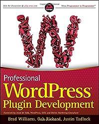 Professional WordPress Plugin Development