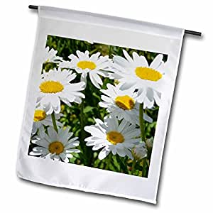 Patricia Sanders Flowers - White Daisy Garden- Flowers- Floral Photography - 18 x 27 inch Garden Flag (fl_42783_2)