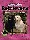 Labrador Retrievers, Julie Murray, 1591973244