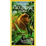 Nat'l Geo: Creatures of Mangrove