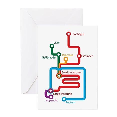 Cards With Subway Map.Amazon Com Cafepress Gastrointestinal Subway Map Greeting Card
