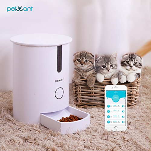 Smart Automatic Pets Feeder For Cats With WiFi Controled Easy Operated Healthy Dry Food Dispenser by Petwant