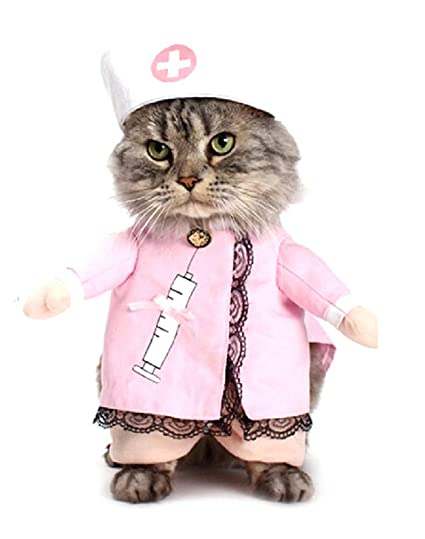 Disfraz de Enfermera - Doctora - Medico - Gato - XL - Idea ...