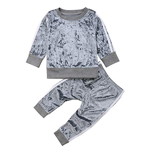 Little Girls' 2 Pieces Long Sleeve Sweatshirt Tops Pants Leggings Clothes Set Outfit (Grey, 2-3 Years)