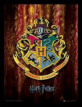 Framed 30 x 40 Official Print Harry Potter Dobby