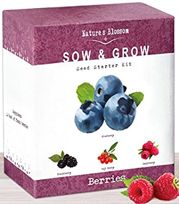 Nature's Blossom Fruit Growing Kit. The Beginner's Set to Grow 4 Types of Berries From Seed - Raspberries ; Blueberries ; Goji Berry ; Blackberries. Contains Planting Pots, Soil & Gardening Guide