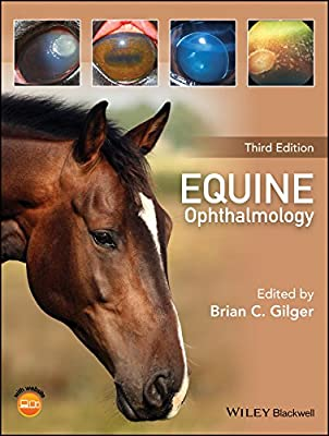 Equine Ophthalmology