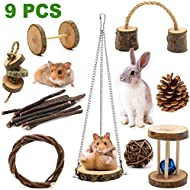 Guinea Pig Toys, ZALALOVA 9Pcs Natural Wooden Pine Hamster Chew Toys Rats Chinchillas Toys Accessories Dumbells Exercise Bell Roller Teeth Care Molar Toy for Birds Bunny Rabbits Gerbils New Year Gifts