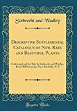 Amazon / Forgotten Books: Descriptive Supplemental Catalogue of New, Rare and Beautiful Plants Cultivated and for Sale by Siebrecht and Wadley, Rose Hill Nurseries, New Rochelle, n. y Classic Reprint (Siebrecht and Wadley)
