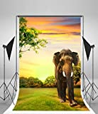 Photography Background Vinly 5x7ft Backdrop Studio Props A Tall Elephant And Animal Style Background