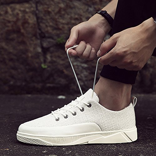 White 3 Spring UK7 CN42 Low Shoes Help and Men's EU Size 5 Color Colors Breathable Feifei Plate Leisure 8 41 Autumn Shoes Wgn61P1B
