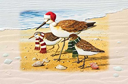 """Pack of 16 """"Blustery Birds"""" Beach with Shells Fine Art Embossed Deluxe Christmas Greeting Cards"""
