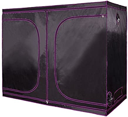 apollo grow tent review