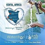 Waterdrop Plus UKF8001 Refrigerator Water