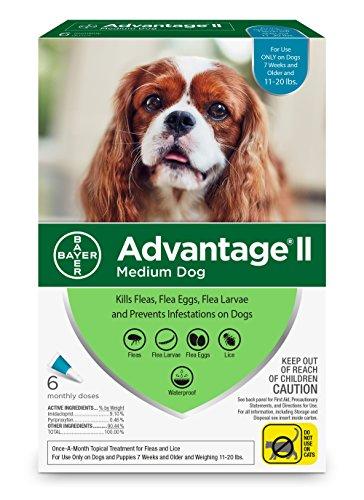 Bayer Advantage II Flea and Lice Treatment for Medium Dogs, 11-20 lb, 6 doses Dog Topical Flea Treatment