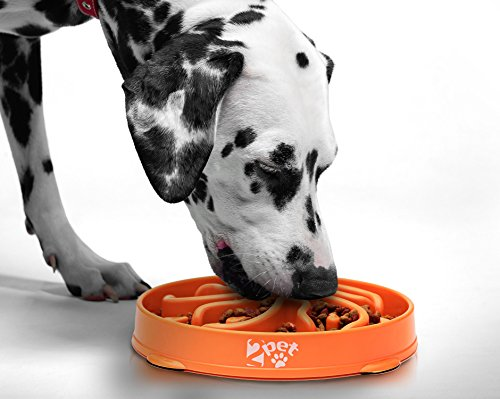 Slow Feed Dog Bowl Slowly Bowly by 2PET. Fun Interactive Dog Dish for Fast Eaters. Prevent Bloating. Fun to Use Dog Bowl…