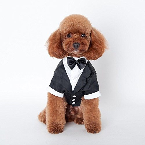 [New Pet Dog Cat Puppy Tuxedo Bow Tie Wedding Suit Costumes Coat (S)] (Pomeranian Costume)