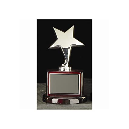 Amazon Com Silver Or Gold Plated Star Trophy Engravable