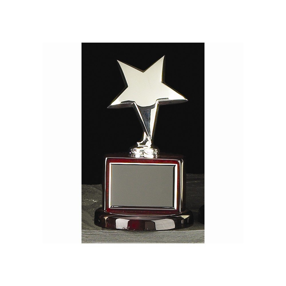 Silver or Gold-plated Star Trophy - Engravable Personalized Gift Item Home Garden Living Gifts by Goldia