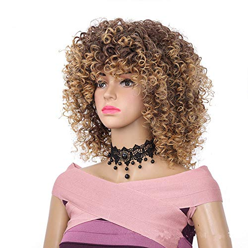 "Search : ZiQe 14"" Synthetic Short Afro Curly Wigs for Black Women Natural Kinky Hair For African American Women Wigs"