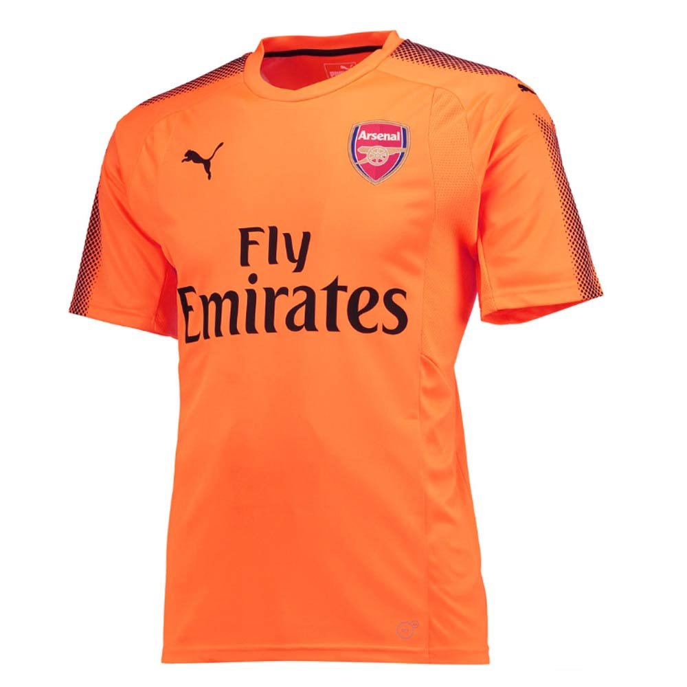 64c728e1d1b Amazon.com : PUMA 2017-2018 Arsenal Away SS Goalkeeper Football Soccer T-Shirt  Jersey (Orange) - Kids : Sports & Outdoors
