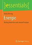 Energie: Richtig bewerten und sinnvoll nutzen (essentials)