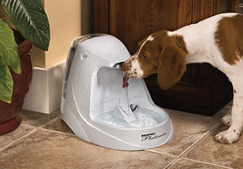 PetSafe Drinkwell Platinum Cat and Dog Water Fountain, Pet Drinking Fountain with Carbon Filter, 168 oz. Water Capacity