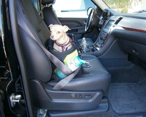 Amazon.com: 3-in-1 Pequeño Mascota Perro Cachorro – Cesta ...