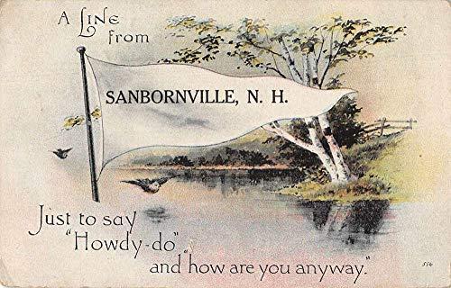 Sanbornville New Hampshire Greetings Pennant Flag Vintage Postcard JA454910