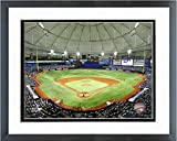 "Tropicana Field Tampa Bay Rays MLB Stadium Photo (Size: 12.5"" x 15.5"") Framed"