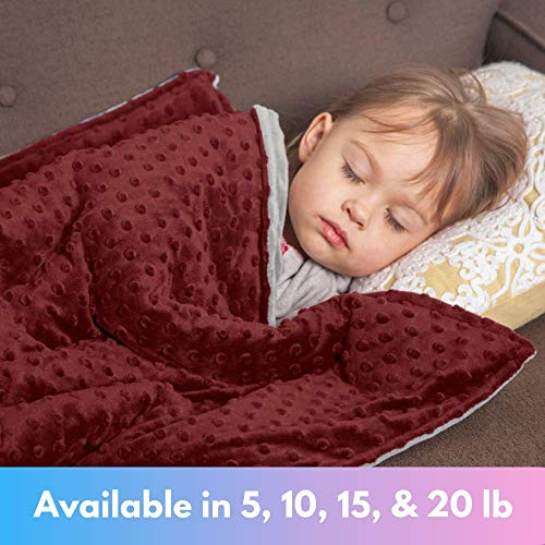 Roore 10 lb Weighted Blanket for Kids I 41x60 I Weighted Blanket with Plush Minky Red Removable Cover I Weighted with Premium Glass Beads I Perfect for Children from 80 to 125 lb