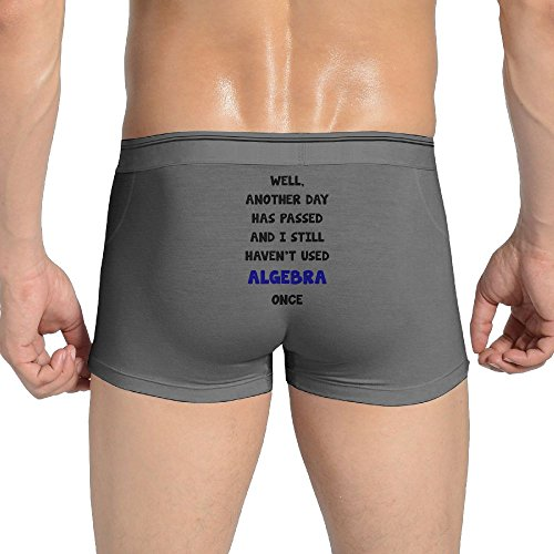 ZhiqianDF Mens Another Day Has Passed and I Still haven't used Comfortable Ash Underwear M Classic Brief Underwear
