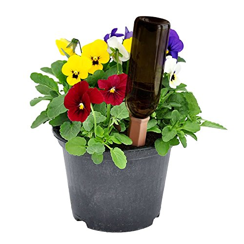 PLANTER PERFECT VACATION WATERING - Automatic Self Water, Plant Spikes Water House Plants and Flowers - Recycled