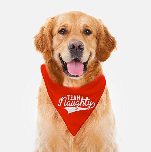 Team Naughty - Dog Bandana, Funny Dog Scarf, Naughty Christmas Bandana, One Size, His Or Hers Unisex Neck Bandana