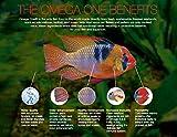 Omega One Super Color Sinking Cichlid Pellets, 4mm