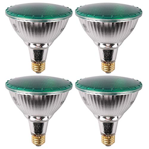 Colored Halogen Flood Light Bulbs in US - 2