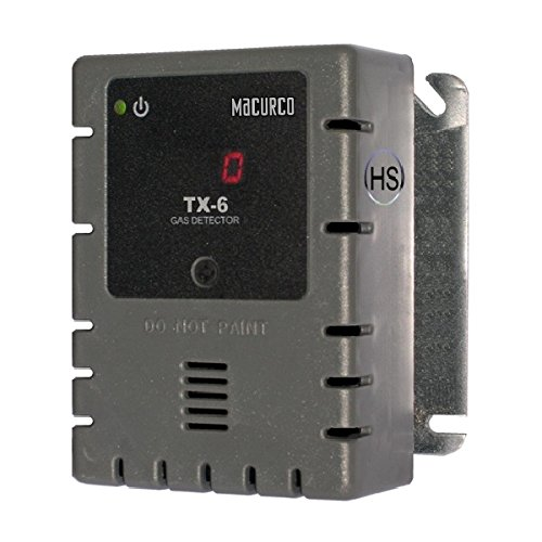 Gas Detector, H2S, 0 to 50 ppm