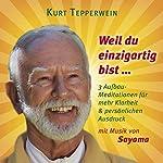 Weil du einzigartig bist... 3 Aufbau-Meditationen für mehr Klarheit & persönlichen Ausdruck | Kurt Tepperwein
