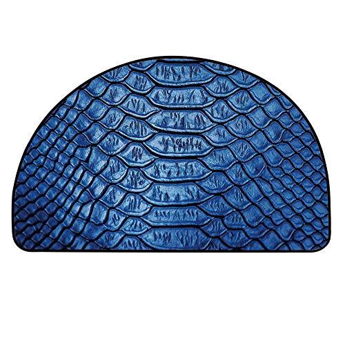 - YOLIYANA Animal Print Decor Doormat,Colored Snake Skin Pattern Alligator Fancy Luxury Leather Clothing Artwork Home Decor Entryway Mat,21.6