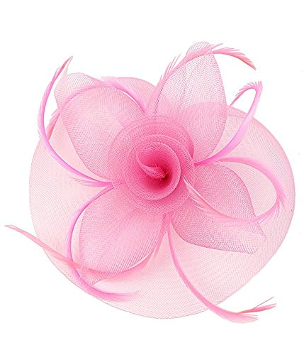 (Kentucky Derby Fascinator Hair Clip Hat Feather Prom Cocktail Party Headwear (B Pink))