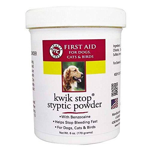 GIMBORN Kwik Stop Styptic Powder Dog Cat & Bird Nail Care - 3 Sizes Available(Kwik Stop Powder - 6 oz) by Gimborn
