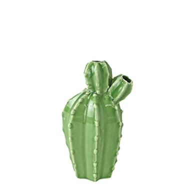 Time Concept Tropical Desert Cactus Double Flower Vase - Porcelain Dinnerware Set