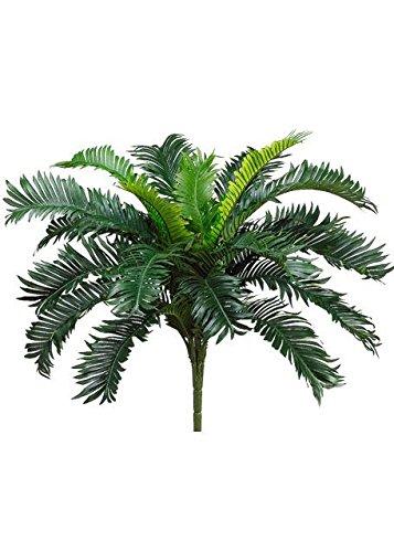 Allstate Cycas Palm Bush - 22'' Tall by Allstate