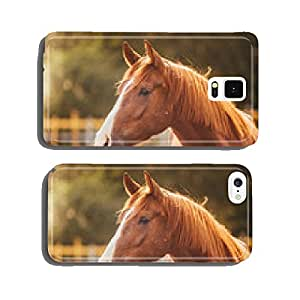 horse in the paddock, Outdoors, rider cell phone cover case Samsung S5