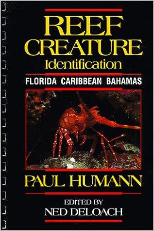 Reef Creature Identification Caribbean Bahamas Florida