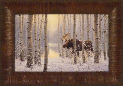 moose pictures - 8
